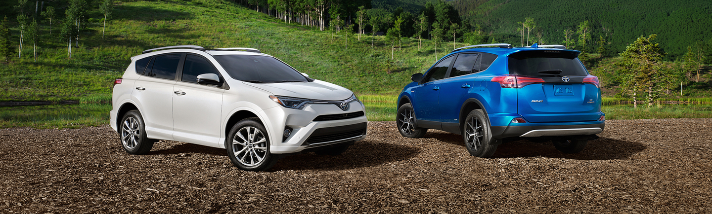 2017 Toyota Rav4 Trims and Colors in Boston