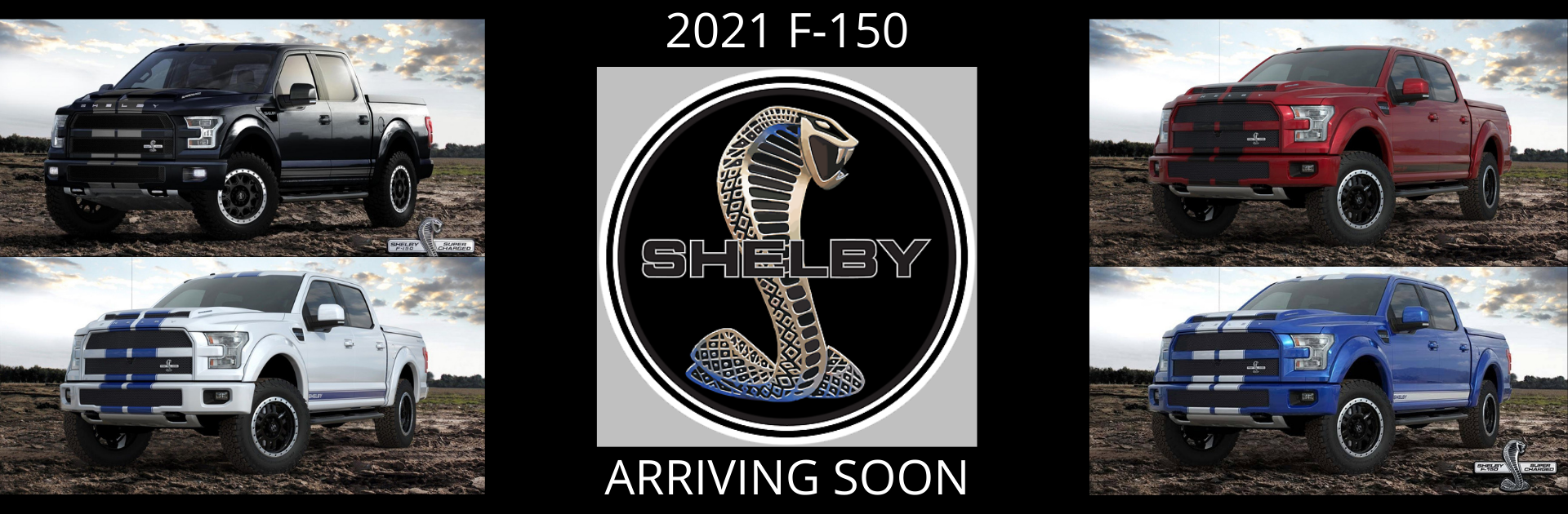 2021 F 150 Shelby