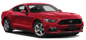 Mustang-SEO-Image2-Backwards
