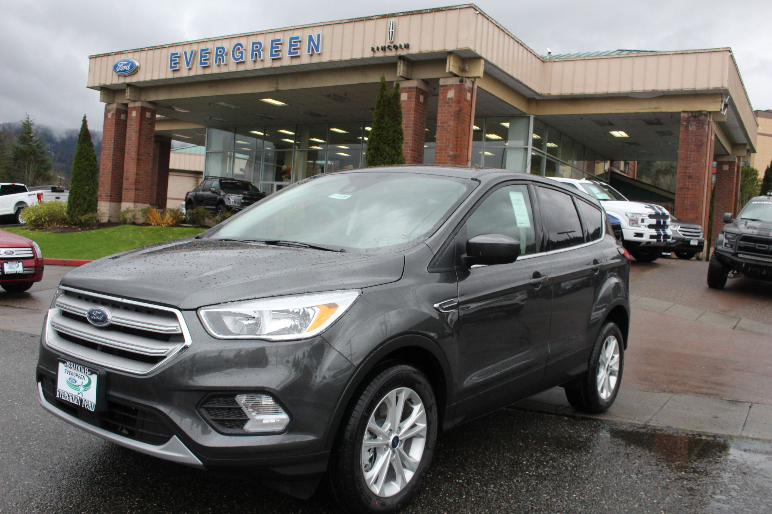 2019 Ford Escape for Sale near Seattle