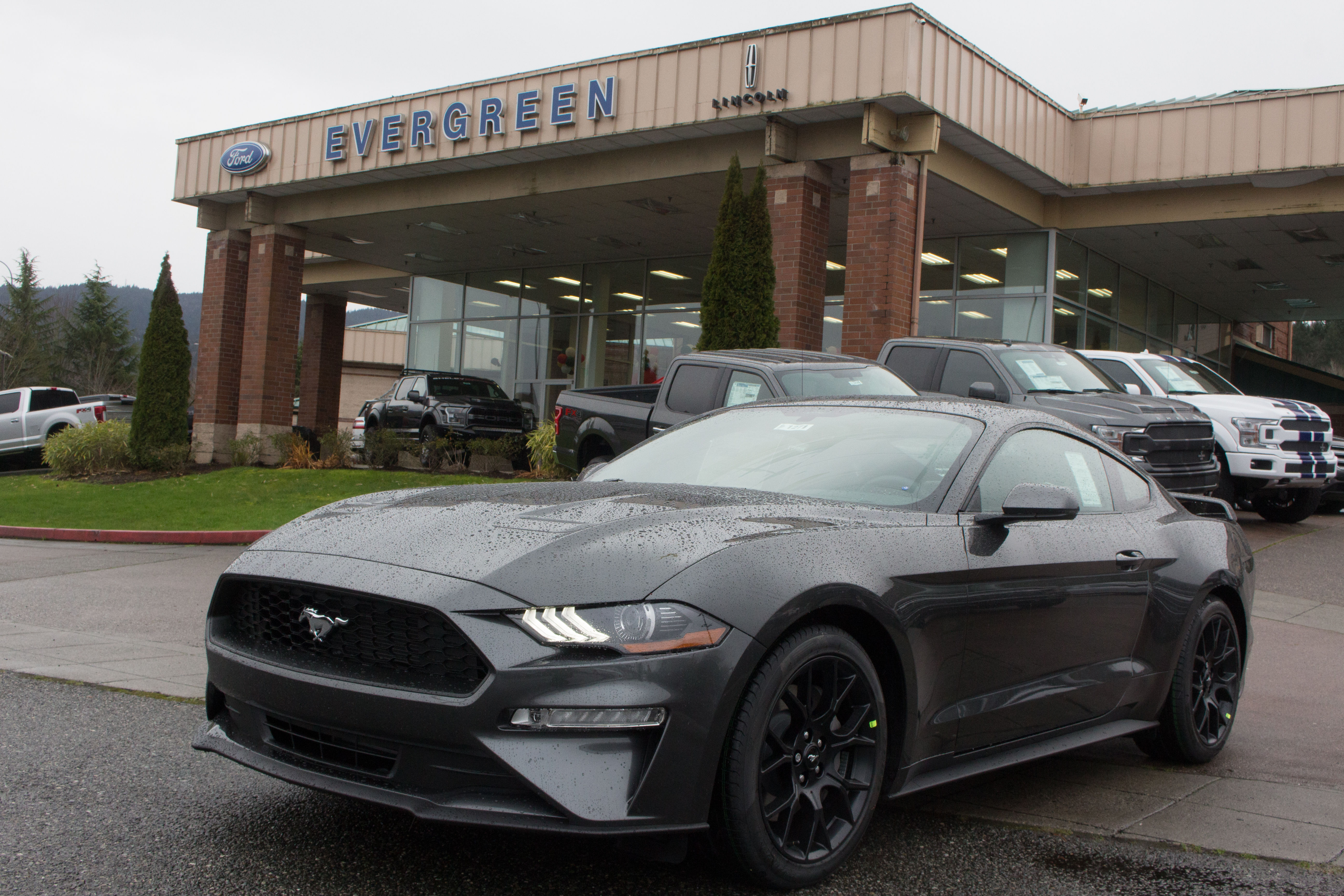2019 Ford Mustang for Sale near Bellevue