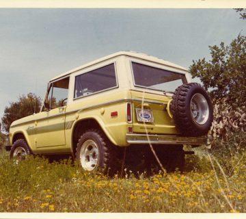 Yellow-Galpinized-Bronco-Back