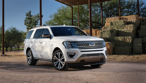 20 Ford Expedition Ranch