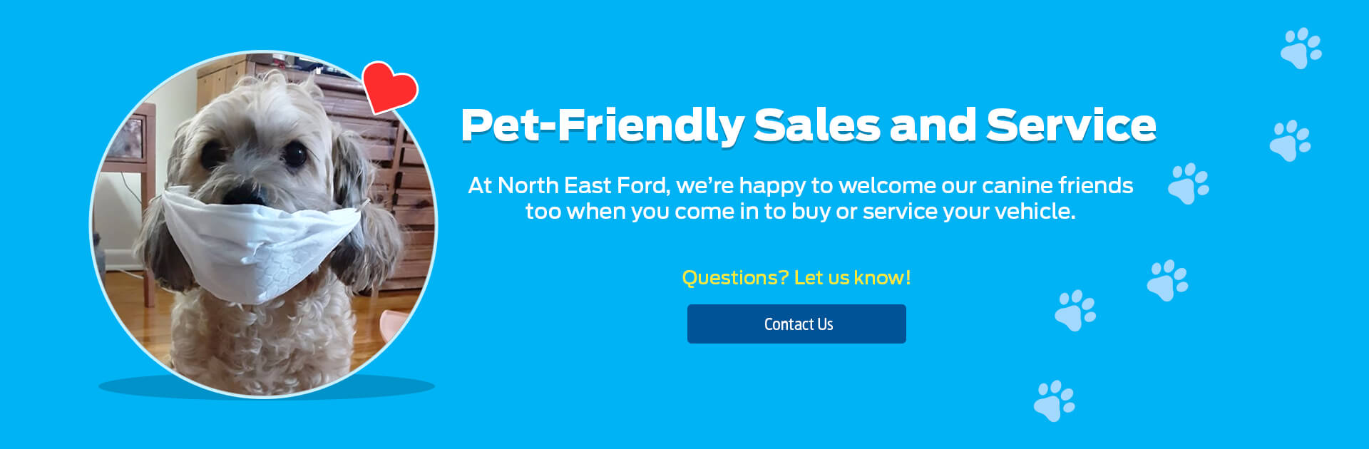 Northeast Ford Pet Friendly Banner 1