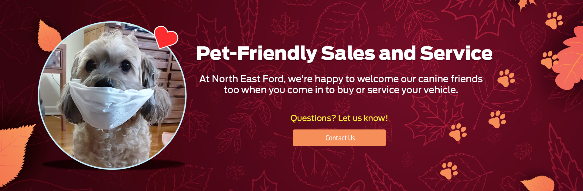 Northeast Ford Thanksgiving Pet Friendly Banner