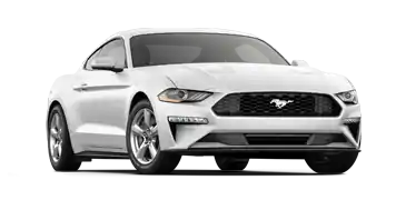 2019 Ford Mustang Special | Roesch Ford