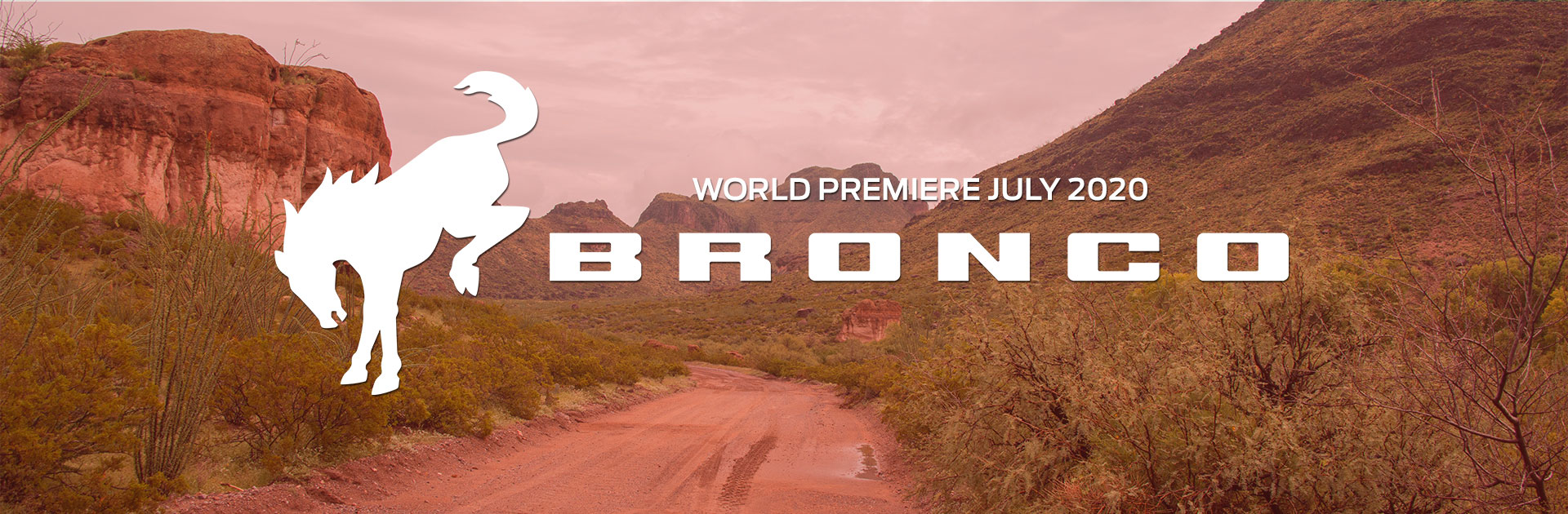 Bronco Coming Soon Texas Edition