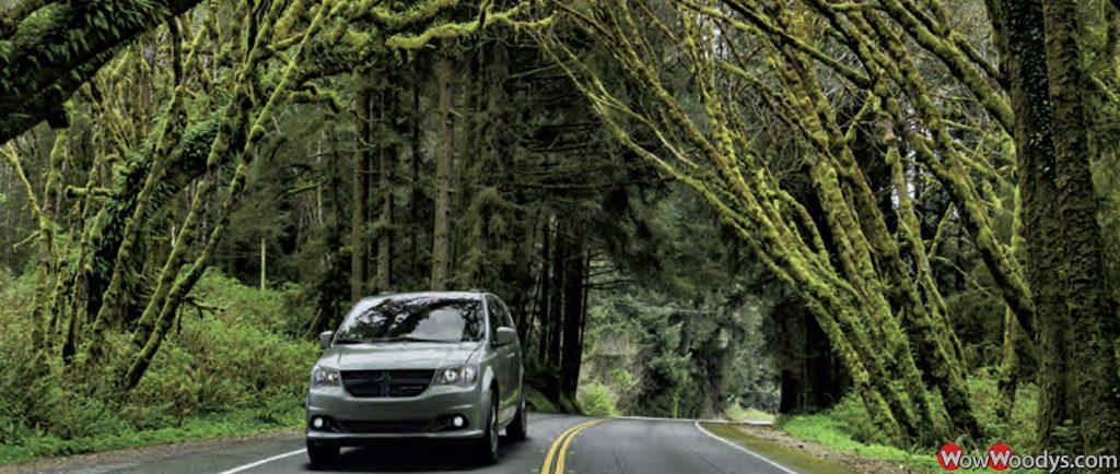 2019 Dodge Grand Caravan for Sale at Wowwoodys
