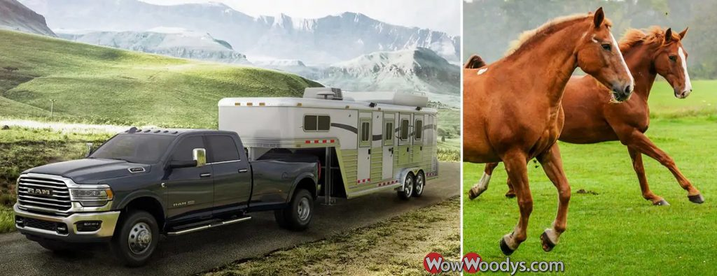 All-new 2019 Ram 3500 Haul More Horses!